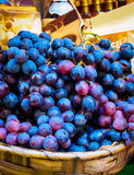 Bunches of blue grapes Royalty Free Stock Images