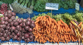 Bunches of Carrots, Beetroot, Spring Onions Stock Photo