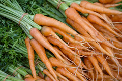 Bunches of carrots Royalty Free Stock Photos