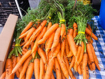 Bunches of Carrots Royalty Free Stock Images