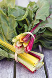 Bunches of Chard Stock Images
