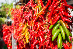 Bunches of chilli peppers Stock Image