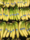 Bunches of Chiquita Bananas for sale in a produce department of a grocery store stock photos