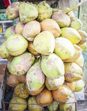 Bunches of coconuts for sale Royalty Free Stock Image