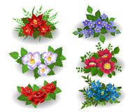 Bunches of colourful flowers. Vector collection of bunches of flowers  on a white background Stock Photos