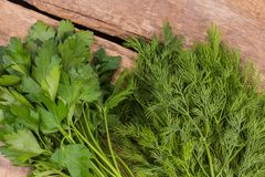 Bunches of dill and parsley. Cooking fresh salad, wooden table background royalty free stock photos