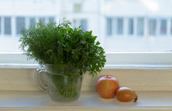 Bunches of dill and parsley in a jar Royalty Free Stock Image