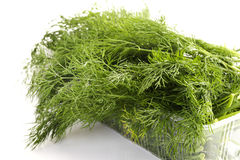 Bunches of dill in plastic box Stock Photos