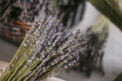 Bunches of dried lavender in backet on wooden background Royalty Free Stock Photo