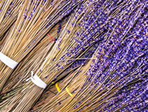 Bunches of dried lavender Royalty Free Stock Photography
