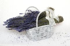 Bunches of dried lavender in a basket royalty free stock photo