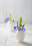 Bunches of  early spring   flowers. Royalty Free Stock Images