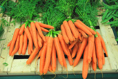 Bunches of fresh carrots on a market Stock Photos