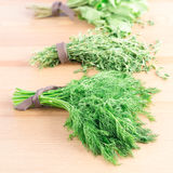 Bunches of fresh dill,  thyme, mint and parsley on a light woode Stock Images