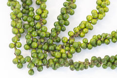 Bunches of fresh green piper nigrum on white background Royalty Free Stock Images