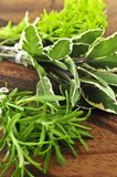 Bunches of fresh herbs Stock Images