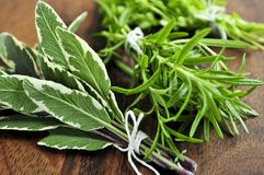 Bunches of fresh herbs royalty free stock images
