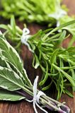 Bunches of fresh herbs Stock Photos