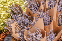 Bunches of fresh lavender Stock Image