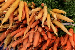 Bunches of fresh picked carrots on table at market Stock Images