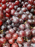 Bunches of fresh red grape stock photo