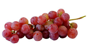 Bunches of fresh red grapes Stock Photography