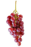 Bunches of fresh red grapes Royalty Free Stock Images