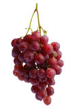 Bunches of fresh red grapes Royalty Free Stock Image