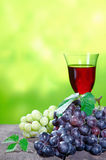 Bunches of grapes with red wine Royalty Free Stock Photography