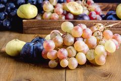 Bunches of fresh ripe grapes and figs on a wooden background Beautiful background with a branch of blue and red grapes. Figs Close Royalty Free Stock Images