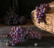 Bunches of fresh ripe red grapes on a wooden textural surface. Branch of pink grapes. Red wine grapes. dark grapes. Still life of stock photo