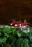 Bunches of fresh salad and radish. Bunches of fresh salad, dill, onion and radish Royalty Free Stock Image