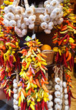 Bunches of garlic and colorful chilli peppers Stock Image