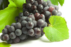Bunches of grapes. Bunches of black grapes and vine leaves Stock Images