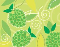 Bunches of grapes. Line art  of three bunches of grapes Royalty Free Stock Images