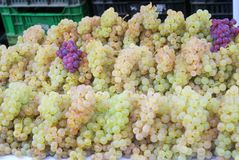 Bunches of grapes in a market Stock Image