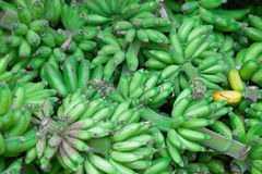 Bunches of green bananas at east market Stock Photography