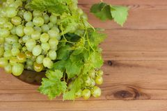 Bunches of green grapes in a Cup. Bunches of grapes in a bowl on the table stock image