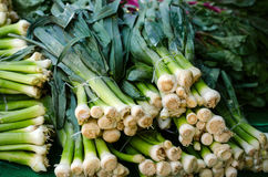 Bunches of green onions bunch at the market place. Stock Photo