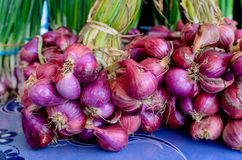 Bunches of green onions on display at a farmers' market Royalty Free Stock Photos