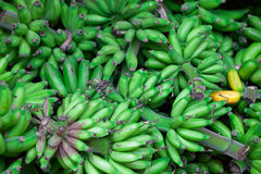 Bunches of green bananas in east market Stock Photo