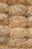 Bunches of hay Royalty Free Stock Image