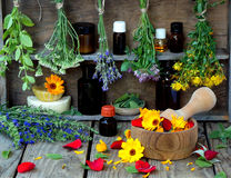 Bunches of healing herbs - mint, yarrow, lavender, clover, hyssop, milfoil, mortar with flowers of calendula and bottles,. Herbal medicine stock photos