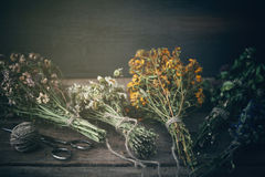 Bunches of healing herbs on wooden board. Herbal medicine. Stock Photography