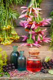 Bunches of healing herbs on wooden wall and glass bottles stock photos