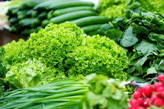 Bunches of lettuce sold on farmer's market. Bunches of organic lettuce sold on farmer's market Royalty Free Stock Photo