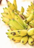 Bunches of Local Rape Bananas. Bunches of yellowish green rape small bananas, also known as Gold Banana or Lady Finger Banana (Musa acuminata Colla) in Royalty Free Stock Photo