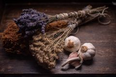 Bunches of medicinal herbs and flowers with garlic. Herbal medicine stock photos