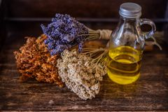Bunches of medicinal herbs and flowers. Herbal medicine royalty free stock photo