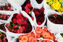 Bunches Of Roses Stock Photos